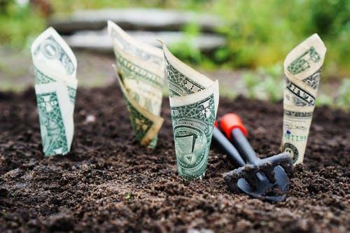 Bunga Deposito Masih Mengiurkan, BI Beri Tawaran Menarik