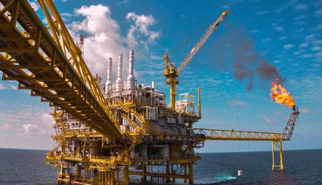 kegunaan minyak bumi