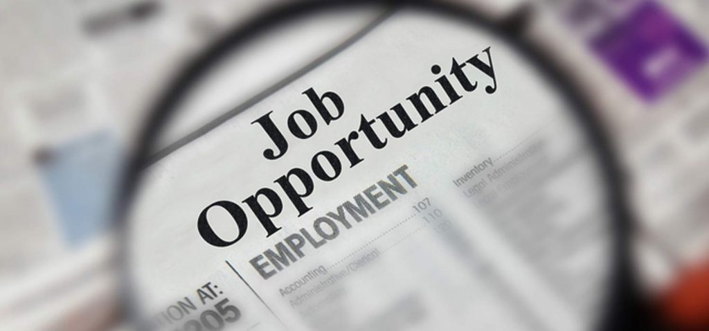 peluang kerja