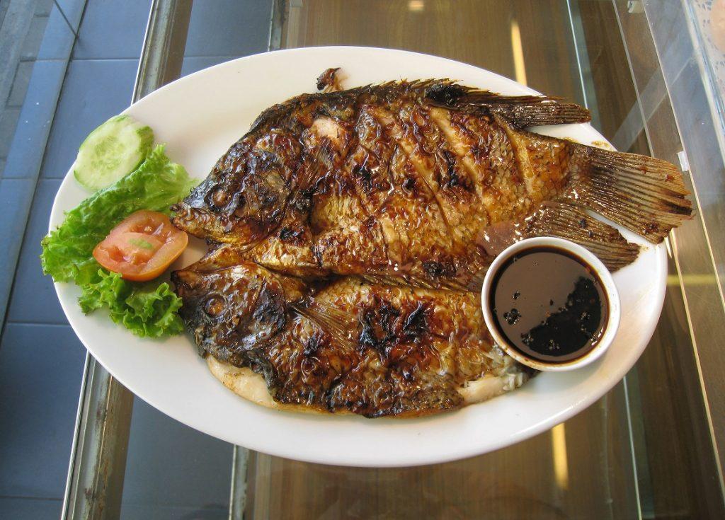 Ikan Gurame adalah komoditi premium menguntungkan hasil dari budidaya bermodal besar .